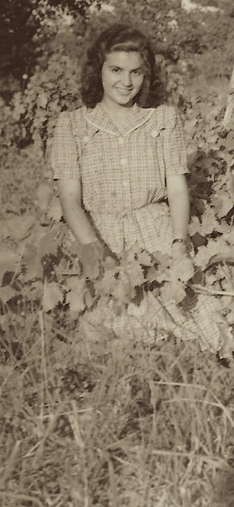 lady vineyard 1