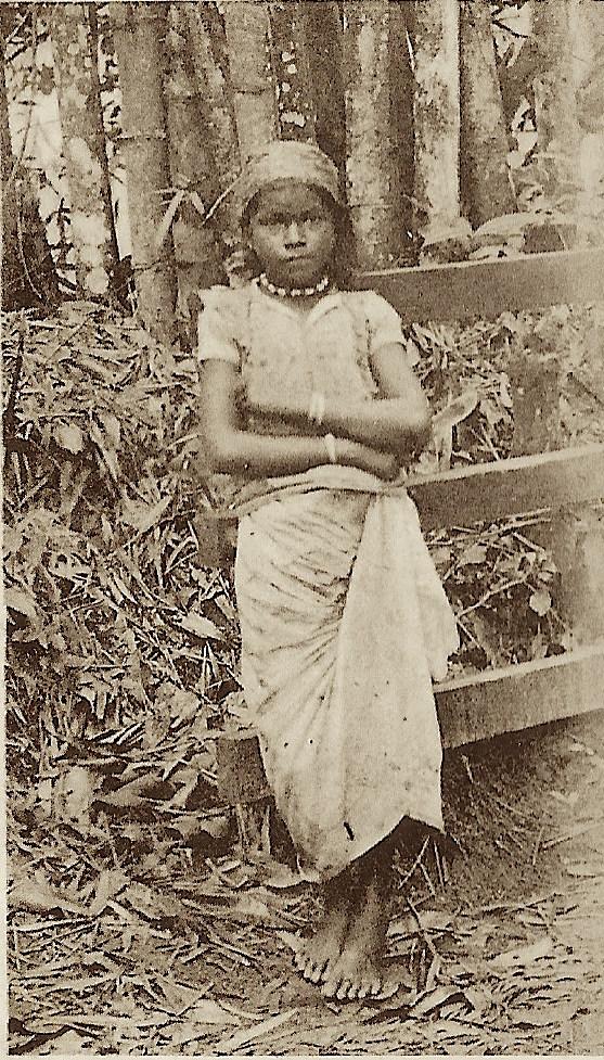 trinidad 1