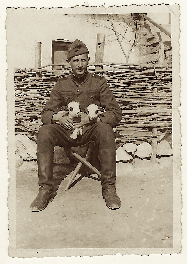 lamb soldier