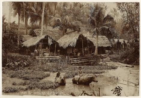 vietnam one 2