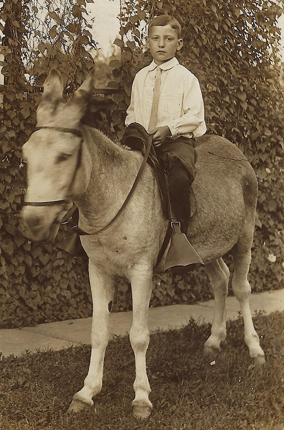 boy riding donkey 1